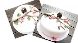 Torte Eule Tortendrang Prüf