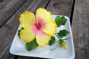 Gelbe Hibiskusblüte aus Blütenpaste