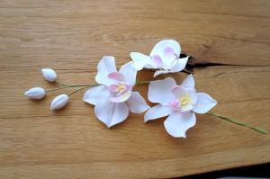 Tortendekoration Orchideen