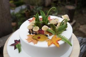 Torte Kaiserslautern Pilze Herbsttorte