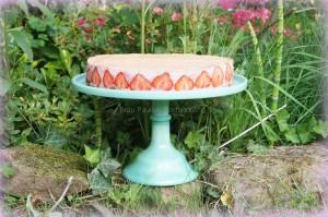 Erdbeer-Mousse-Rhabarber