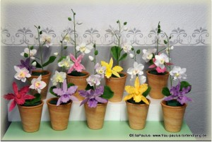 Tortendekorationskurs Orchideen Fondant Kaiserslautern Landstuhl Pirmasens